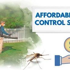affordable-pest-control
