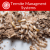 termite-management-system.png