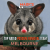 top-rated-possum-removal-melbourne
