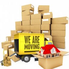 packers-movers-bhopal