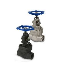 api-602-threaded-forged-globe-valve-1-4-inch-cl800-rising-stem